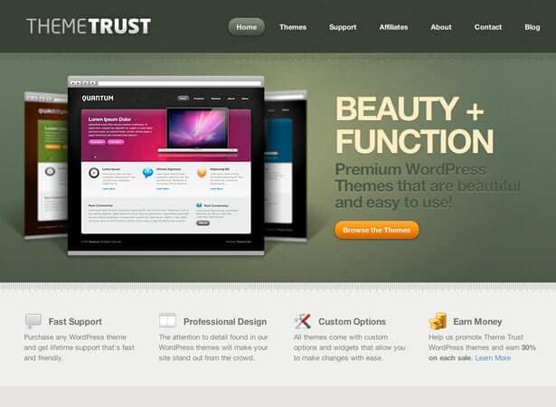 wp_theme_trust